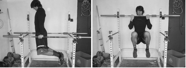 Power tower for home garage gym