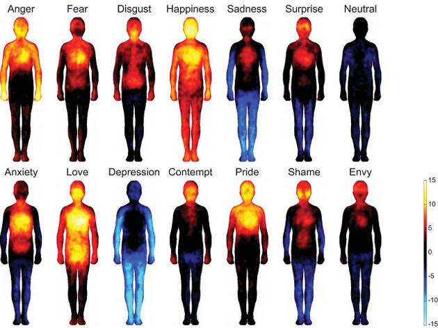 Body Imaging Mind and Body Connection