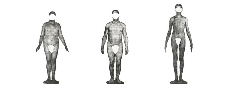 skinny fat somatotypes