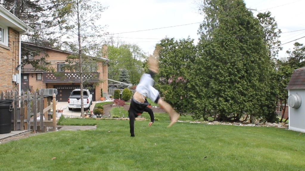 Orthodox Cartwheel by Anthony Mychal